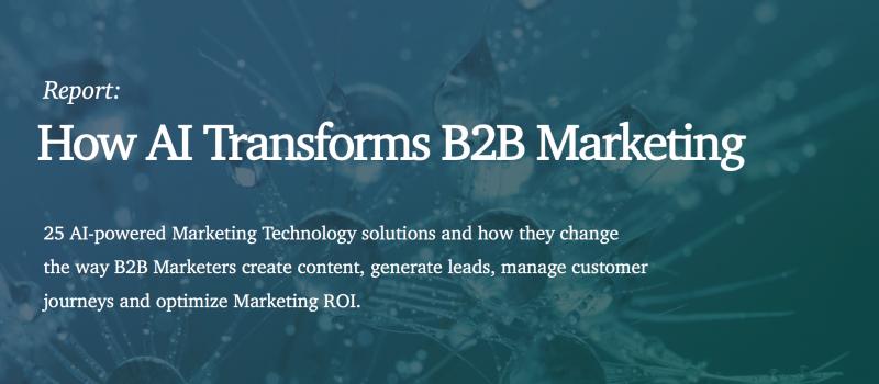 How AI Transforms B2B Marketing